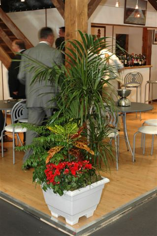 location plantes journ�e